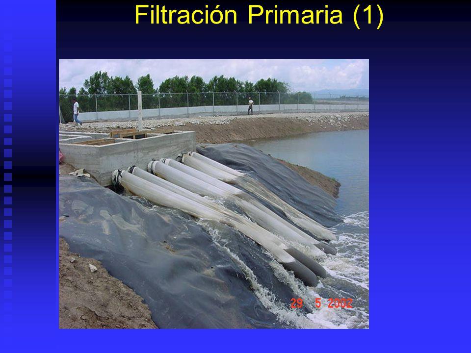 Filtración Primaria (1)