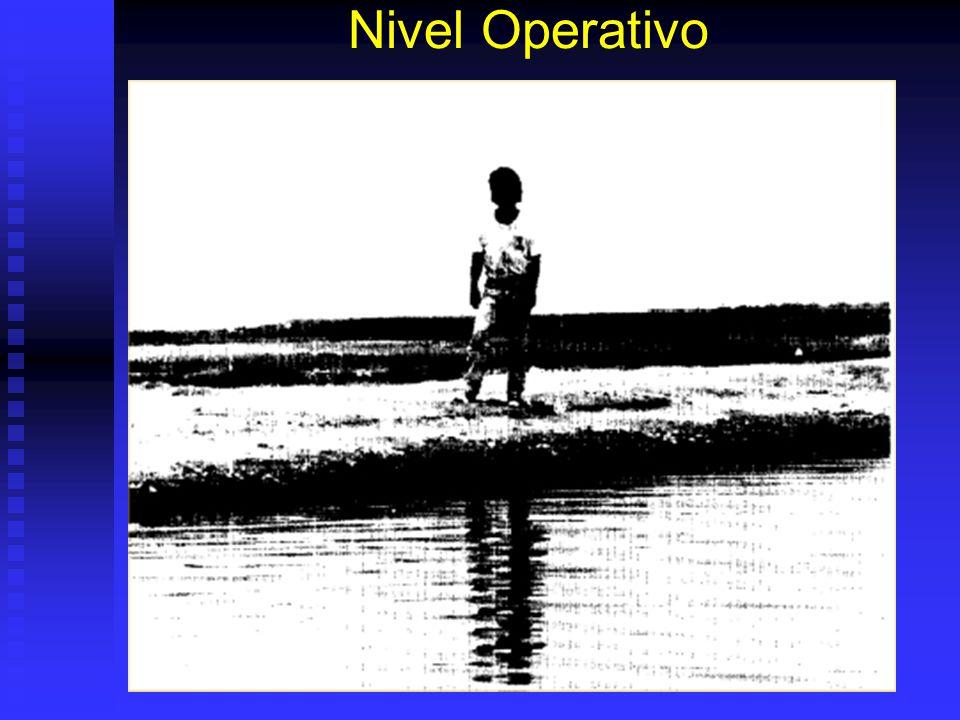 Nivel Operativo