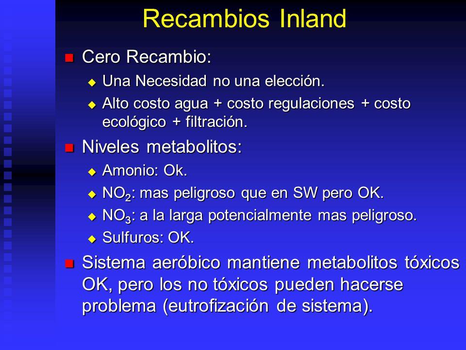 Recambios Inland Cero Recambio: Niveles metabolitos: