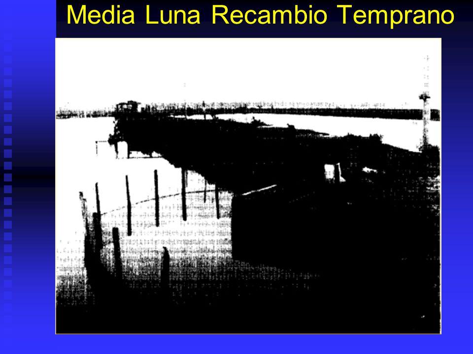 Media Luna Recambio Temprano
