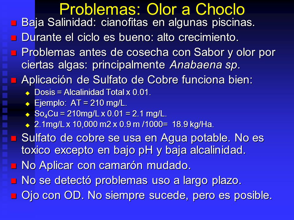 Problemas: Olor a Choclo