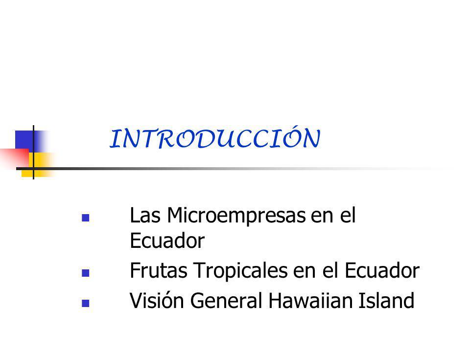 INTRODUCCIÓN Las Microempresas en el Ecuador