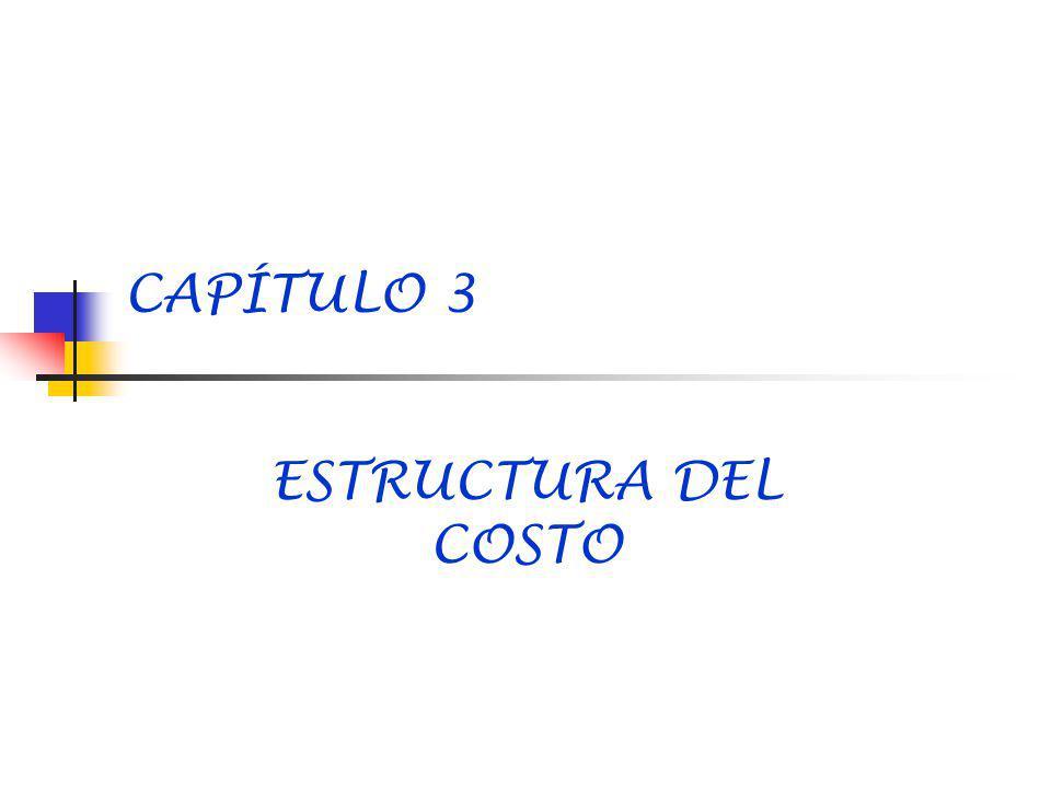 CAPÍTULO 3 ESTRUCTURA DEL COSTO
