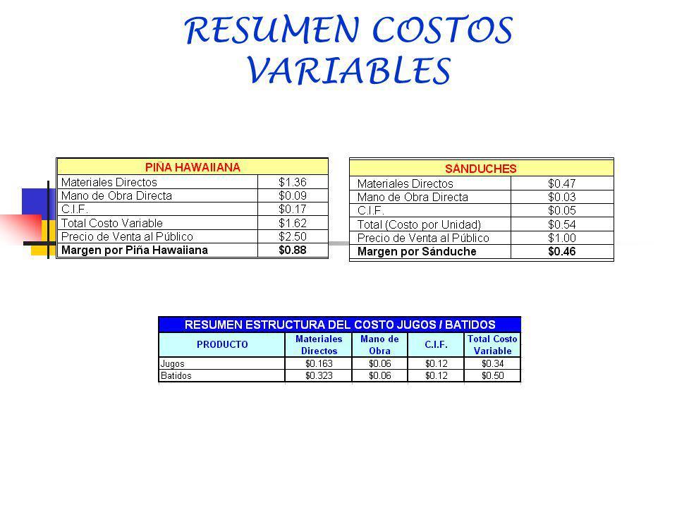 RESUMEN COSTOS VARIABLES