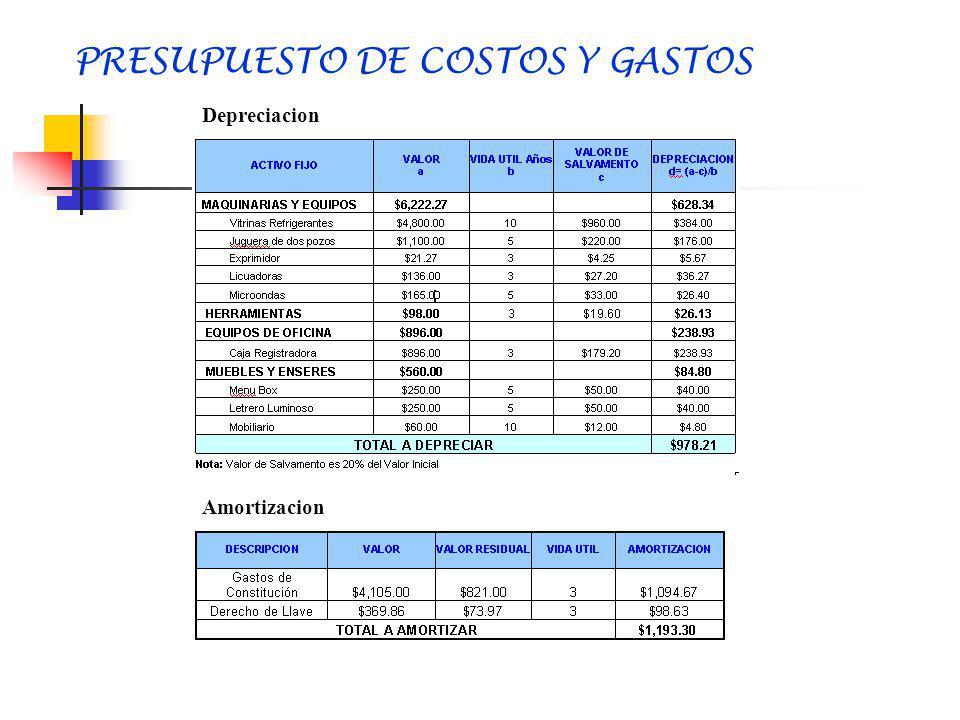 PRESUPUESTO DE COSTOS Y GASTOS