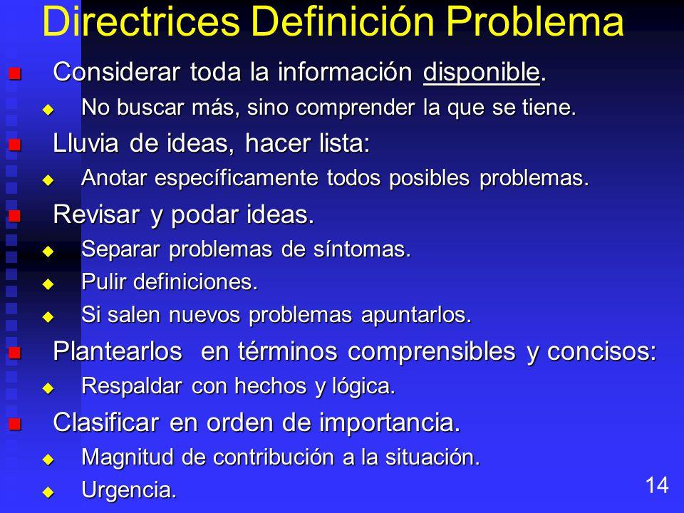 Directrices Definición Problema