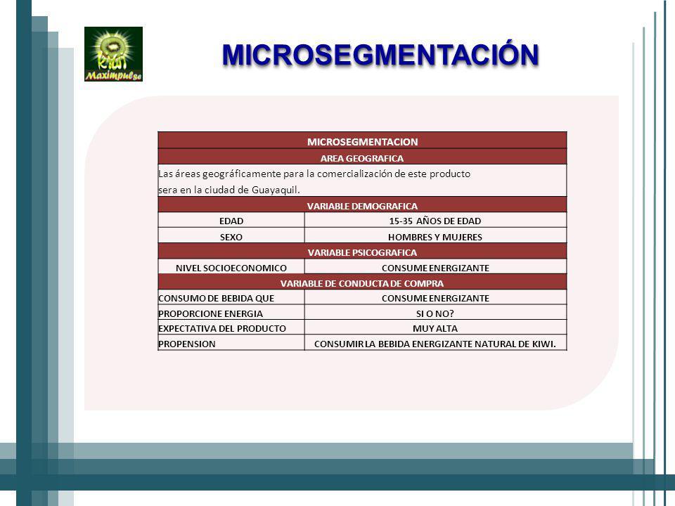 MICROSEGMENTACIÓN MICROSEGMENTACION