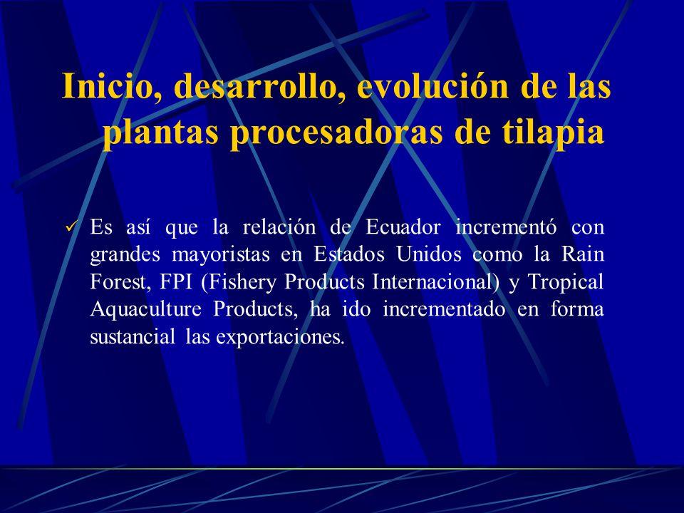 Inicio, desarrollo, evolución de las plantas procesadoras de tilapia