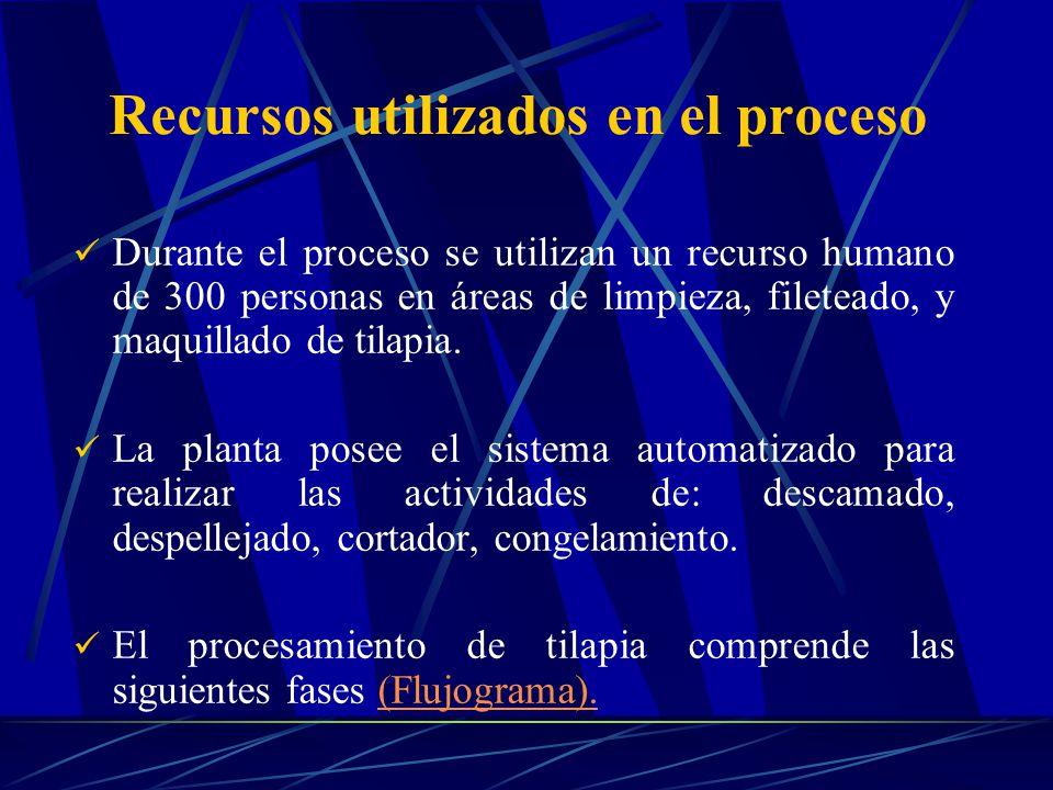Recursos utilizados en el proceso