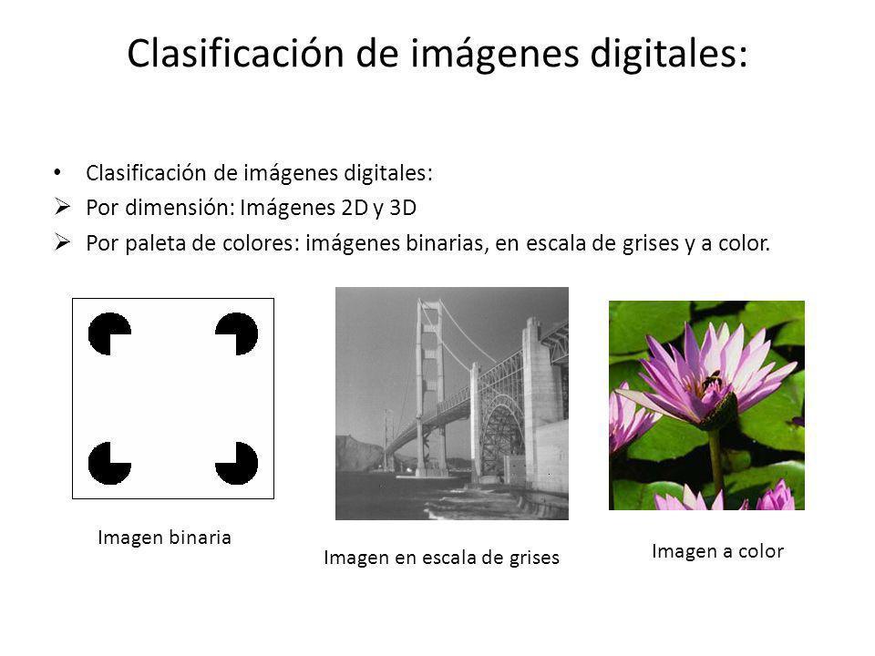 Clasificación de imágenes digitales: