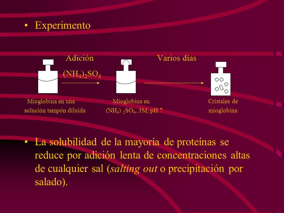 Experimento Adición Varios dias (NH4)2SO4
