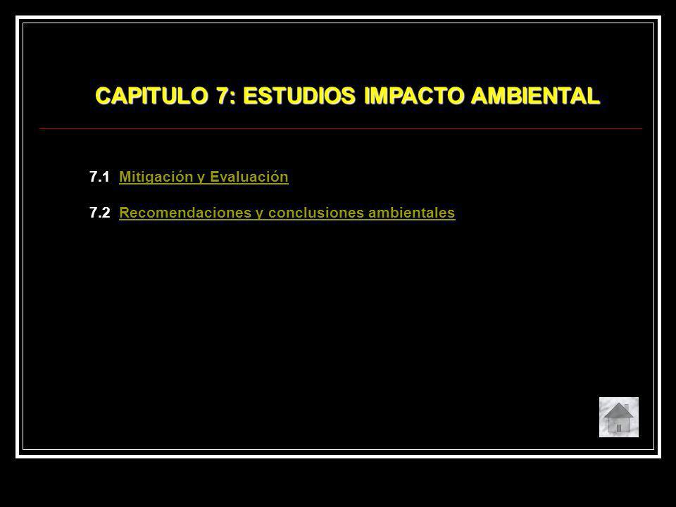 CAPITULO 7: ESTUDIOS IMPACTO AMBIENTAL
