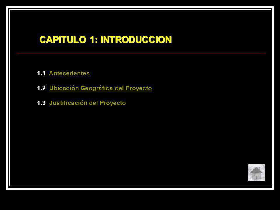 CAPITULO 1: INTRODUCCION