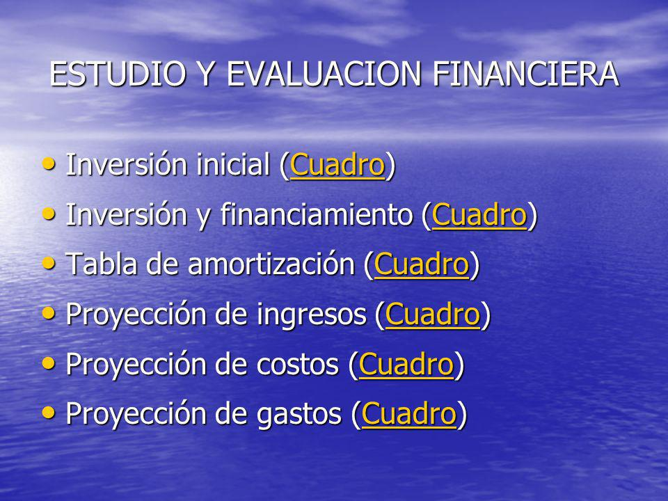 ESTUDIO Y EVALUACION FINANCIERA