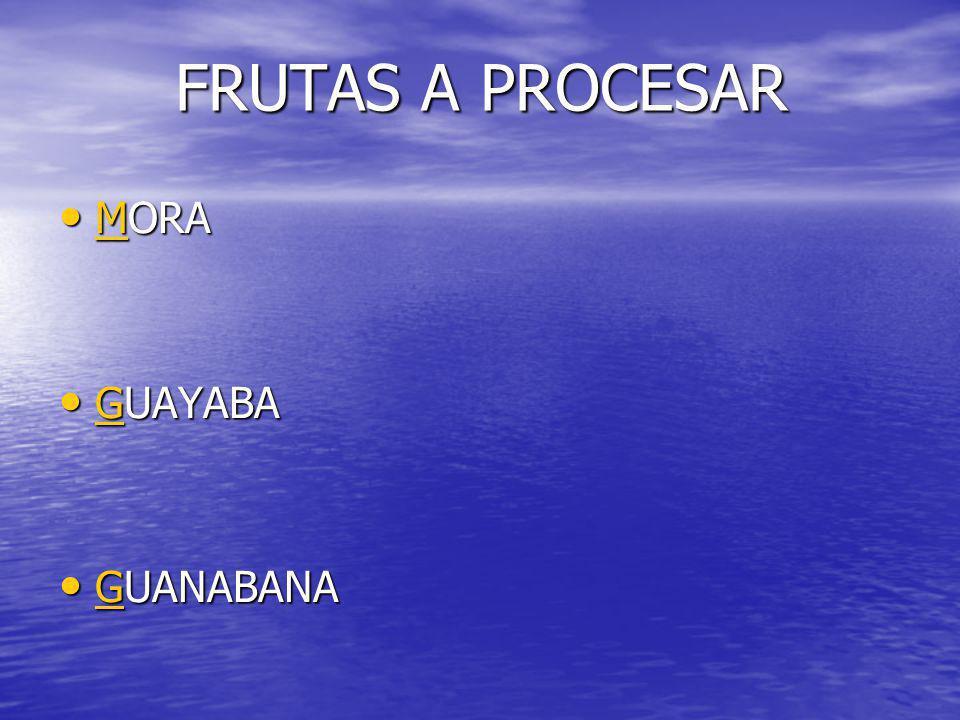 FRUTAS A PROCESAR MORA GUAYABA GUANABANA
