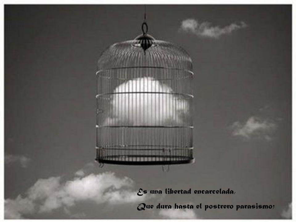 Es una libertad encarcelada,