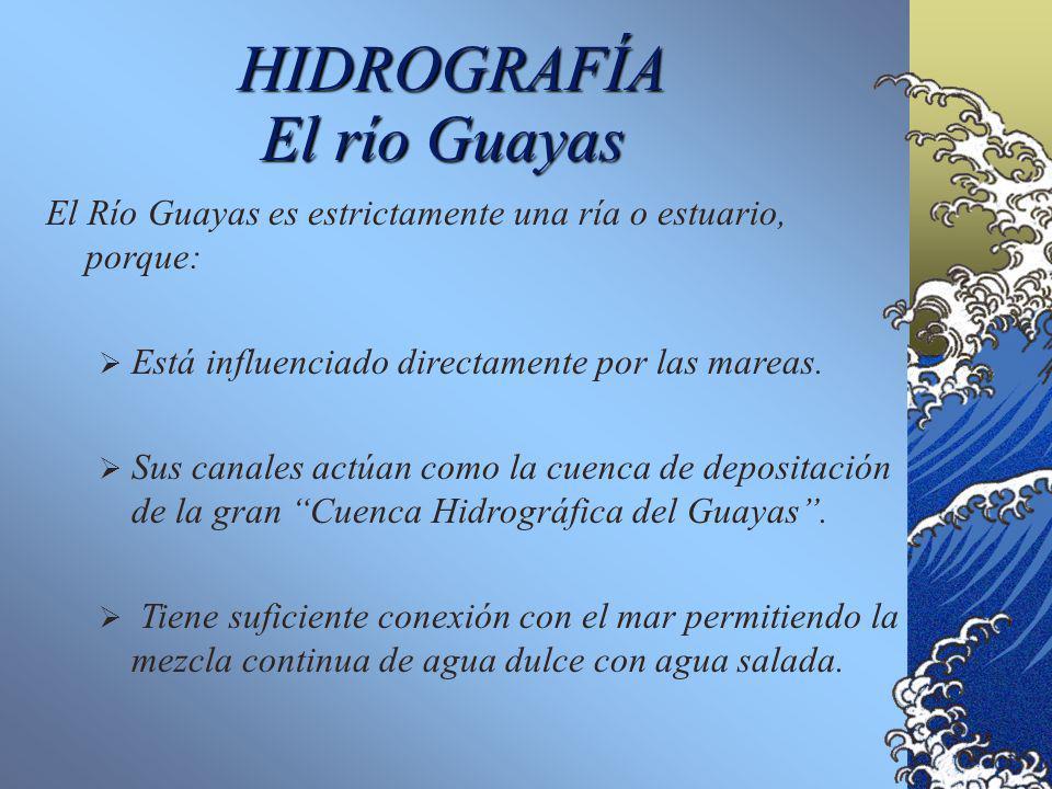 HIDROGRAFÍA El río Guayas