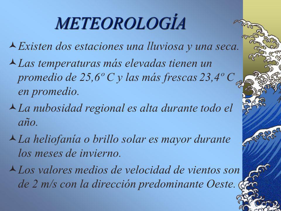 METEOROLOGÍA Existen dos estaciones una lluviosa y una seca.