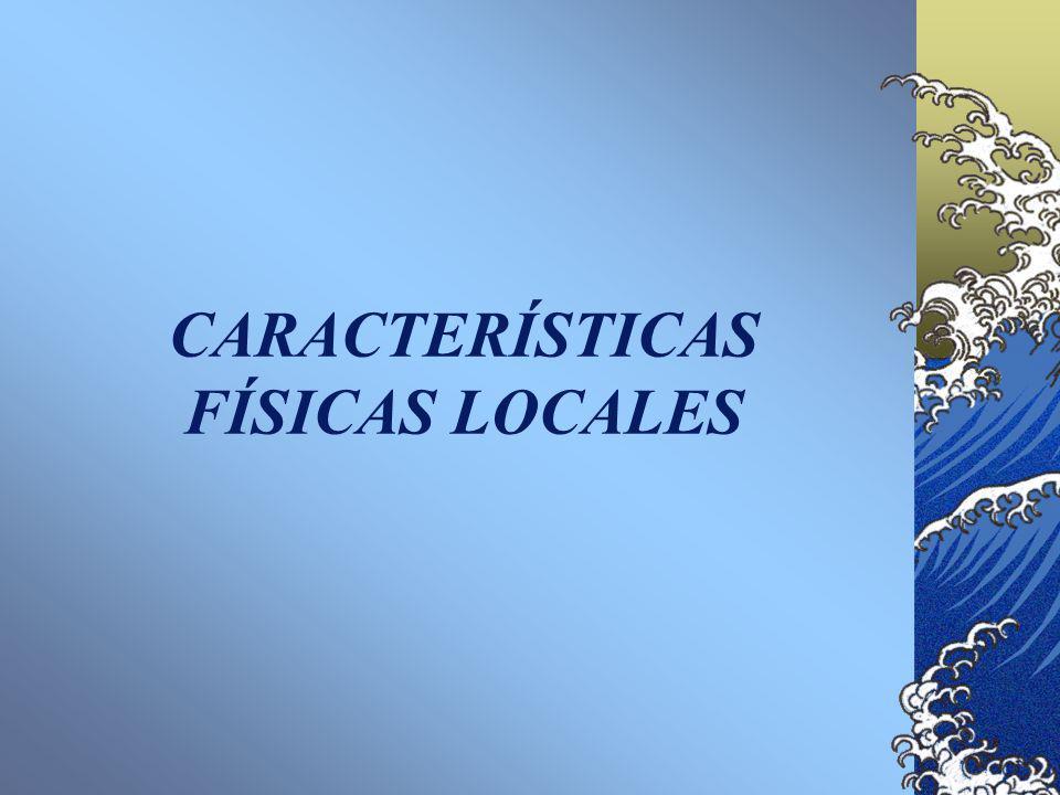 CARACTERÍSTICAS FÍSICAS LOCALES