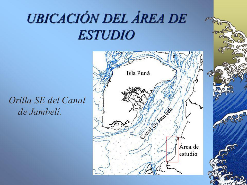 UBICACIÓN DEL ÁREA DE ESTUDIO
