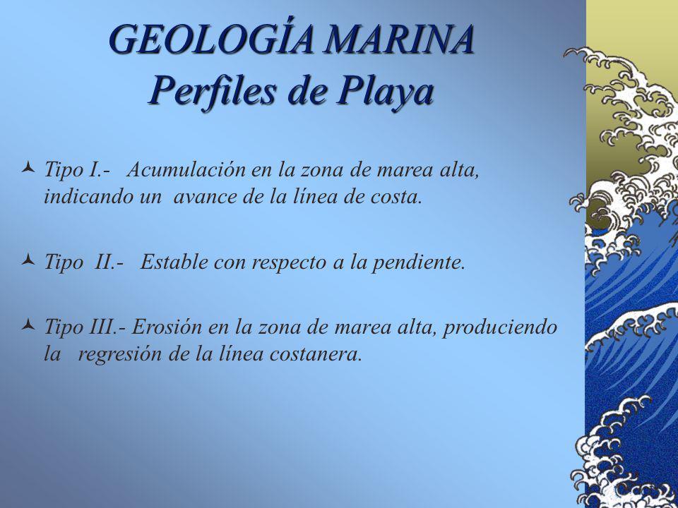 GEOLOGÍA MARINA Perfiles de Playa