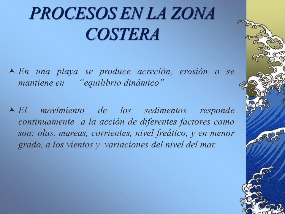 PROCESOS EN LA ZONA COSTERA