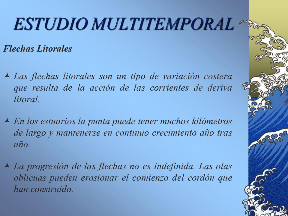 ESTUDIO MULTITEMPORAL