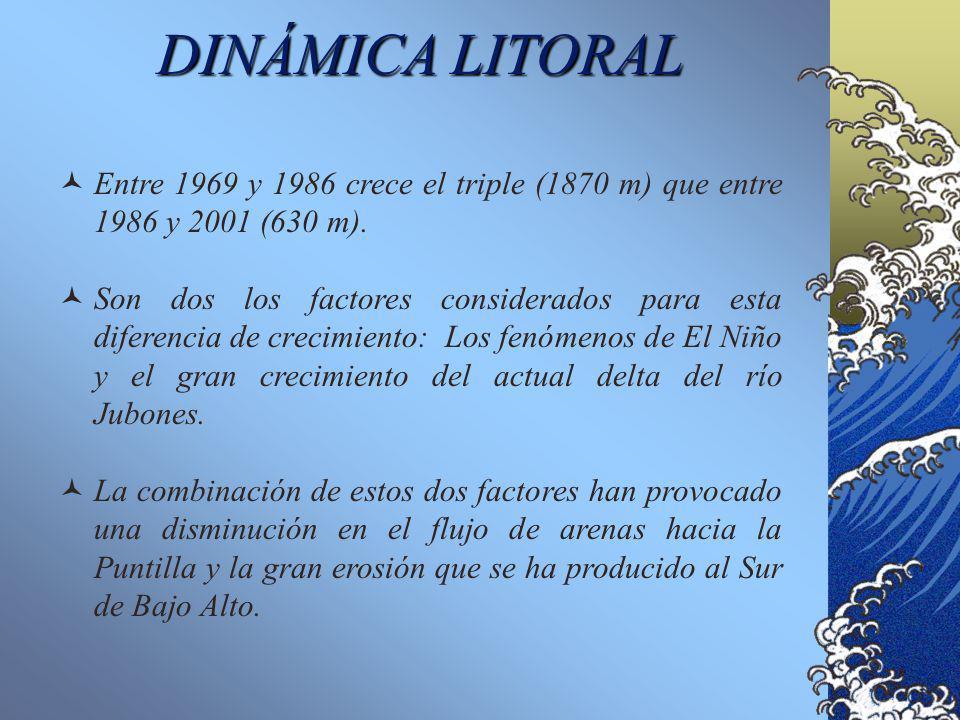 DINÁMICA LITORAL Entre 1969 y 1986 crece el triple (1870 m) que entre 1986 y 2001 (630 m).