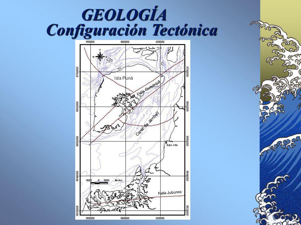 GEOLOGÍA Configuración Tectónica