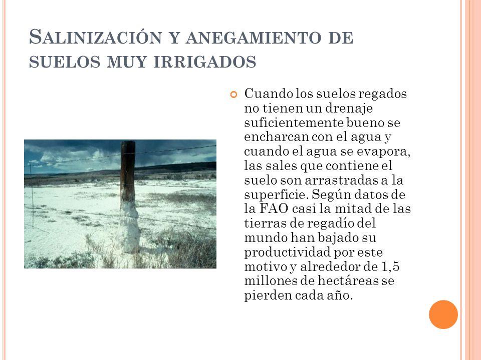 Salinización y anegamiento de suelos muy irrigados