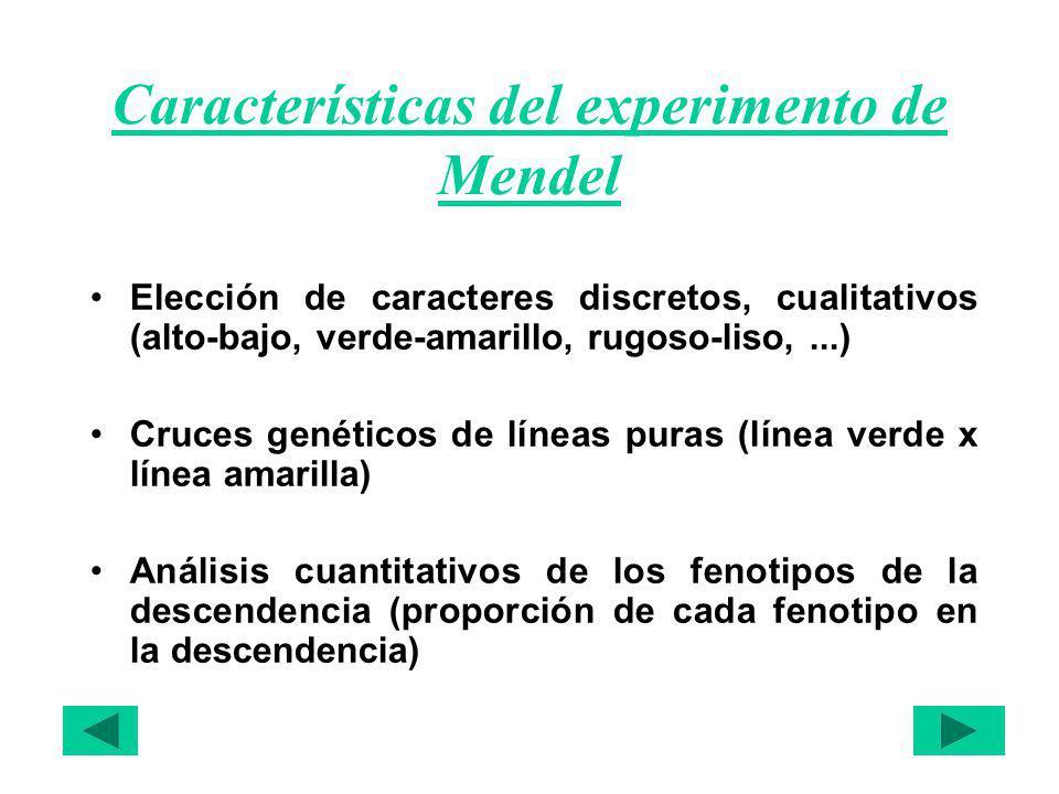 Características del experimento de Mendel