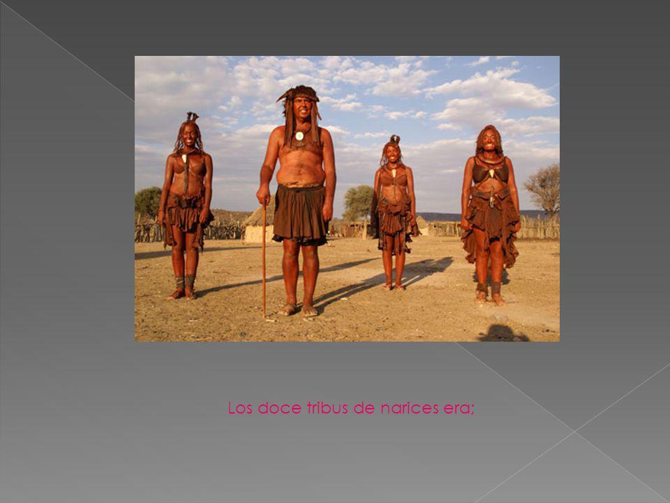 Los doce tribus de narices era;