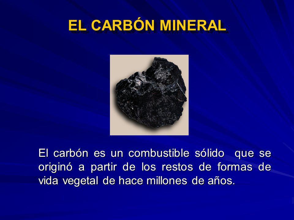 EL CARBÓN MINERAL El carbón es un combustible sólido que se originó a partir de los restos de formas de vida vegetal de hace millones de años.