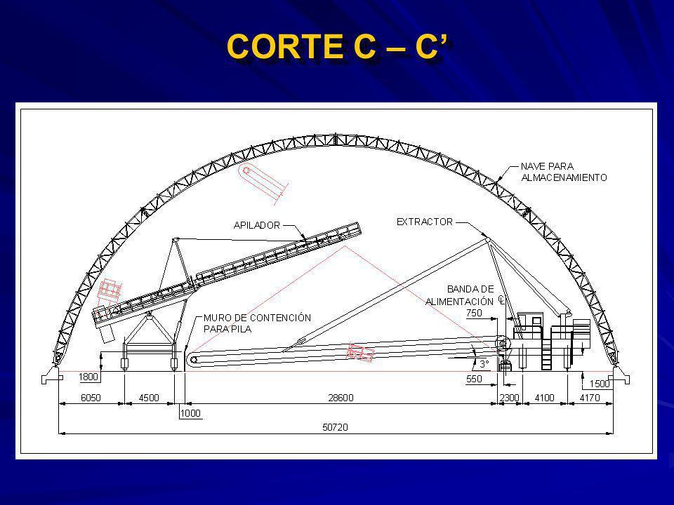 CORTE C – C'