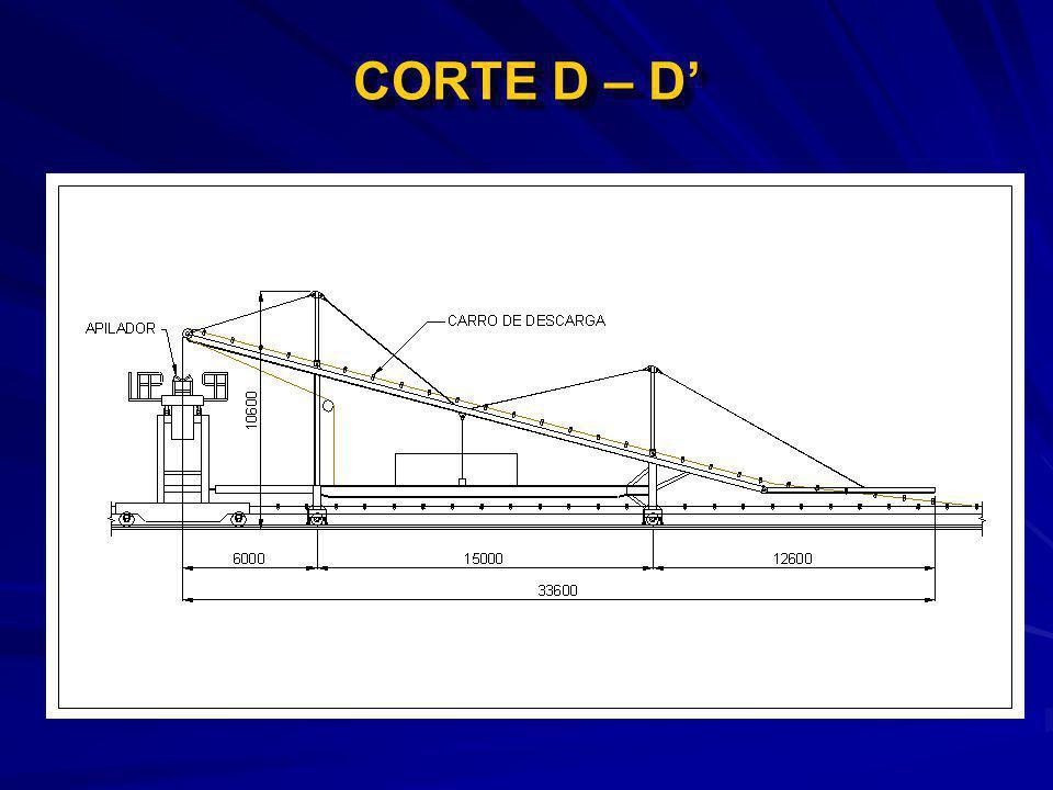 CORTE D – D'