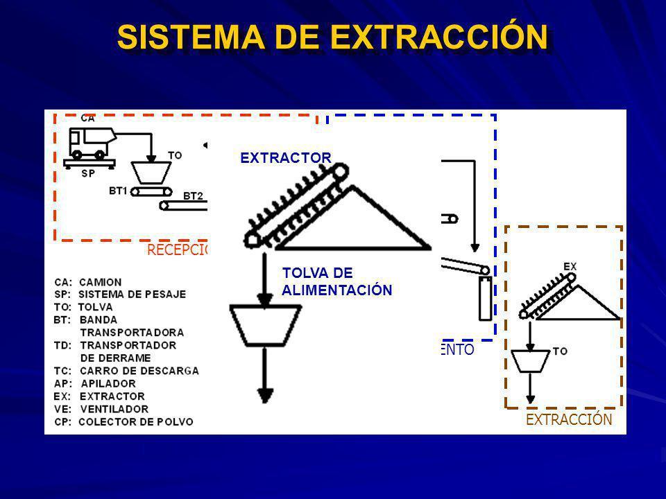 SISTEMA DE EXTRACCIÓN EXTRACTOR RECEPCIÓN TOLVA DE ALIMENTACIÓN