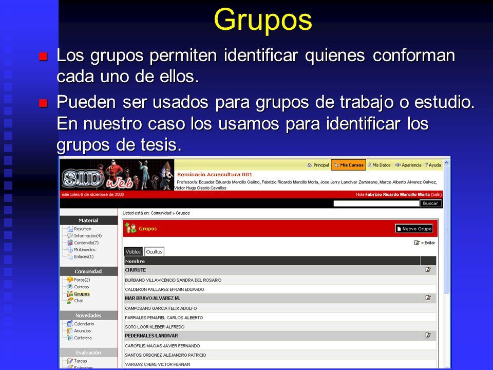 Grupos Los grupos permiten identificar quienes conforman cada uno de ellos.