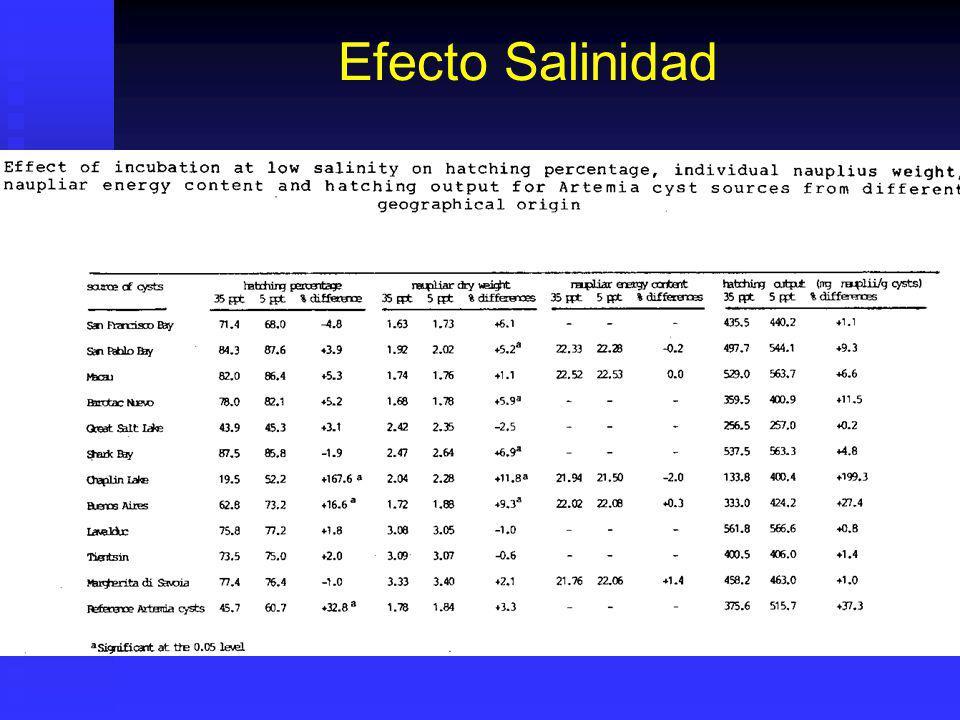 Efecto Salinidad