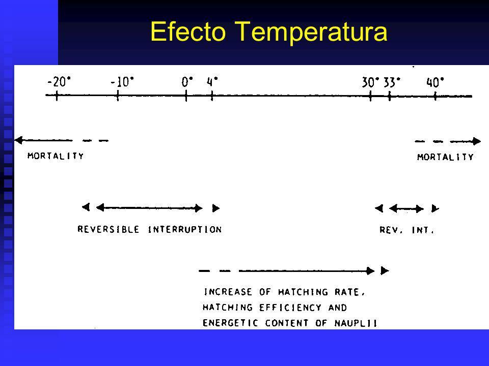 Efecto Temperatura