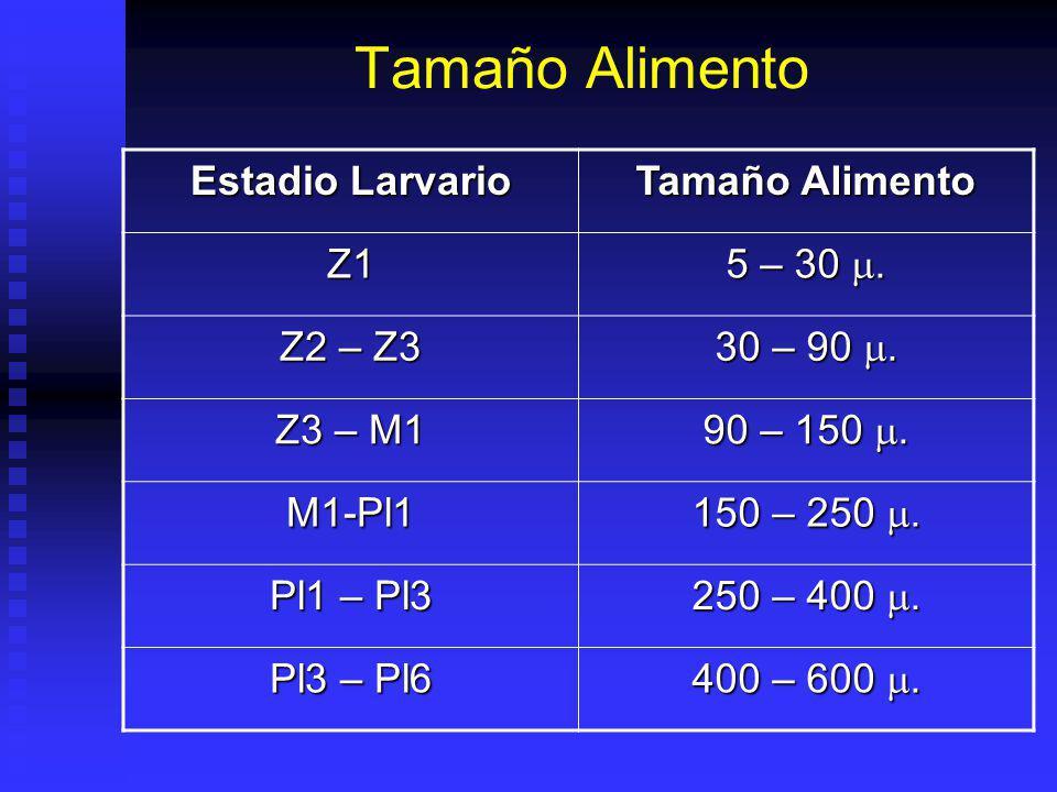 Tamaño Alimento Estadio Larvario Tamaño Alimento Z1 5 – 30 m. Z2 – Z3