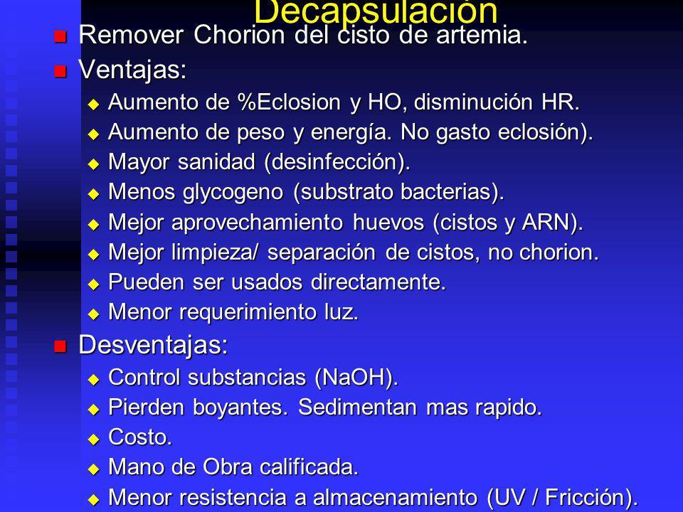 Decapsulación Remover Chorion del cisto de artemia. Ventajas:
