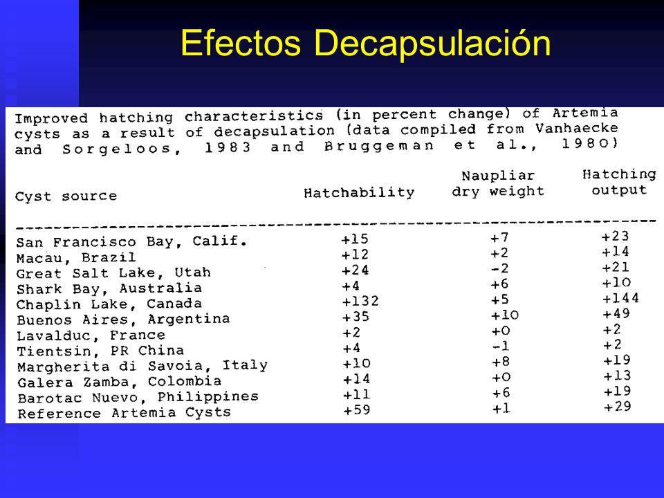 Efectos Decapsulación
