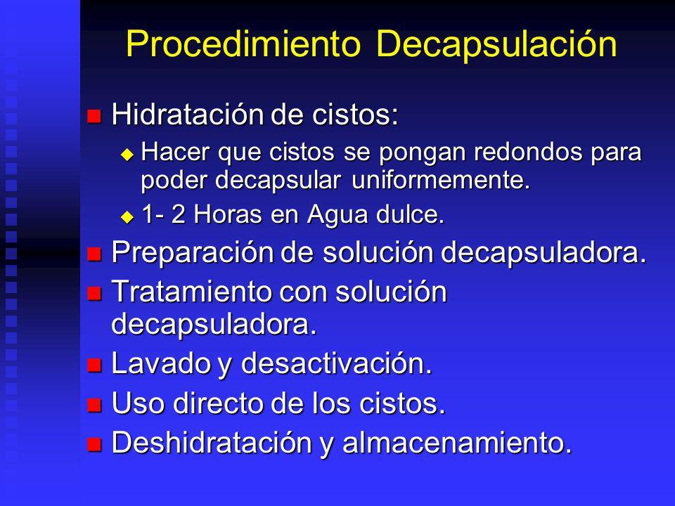 Procedimiento Decapsulación