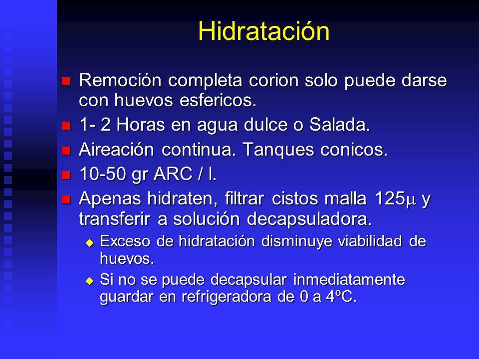 Hidratación Remoción completa corion solo puede darse con huevos esfericos. 1- 2 Horas en agua dulce o Salada.