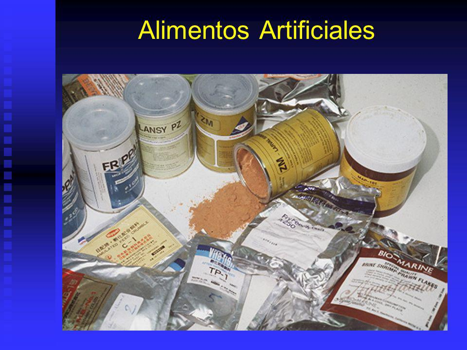 Alimentos Artificiales
