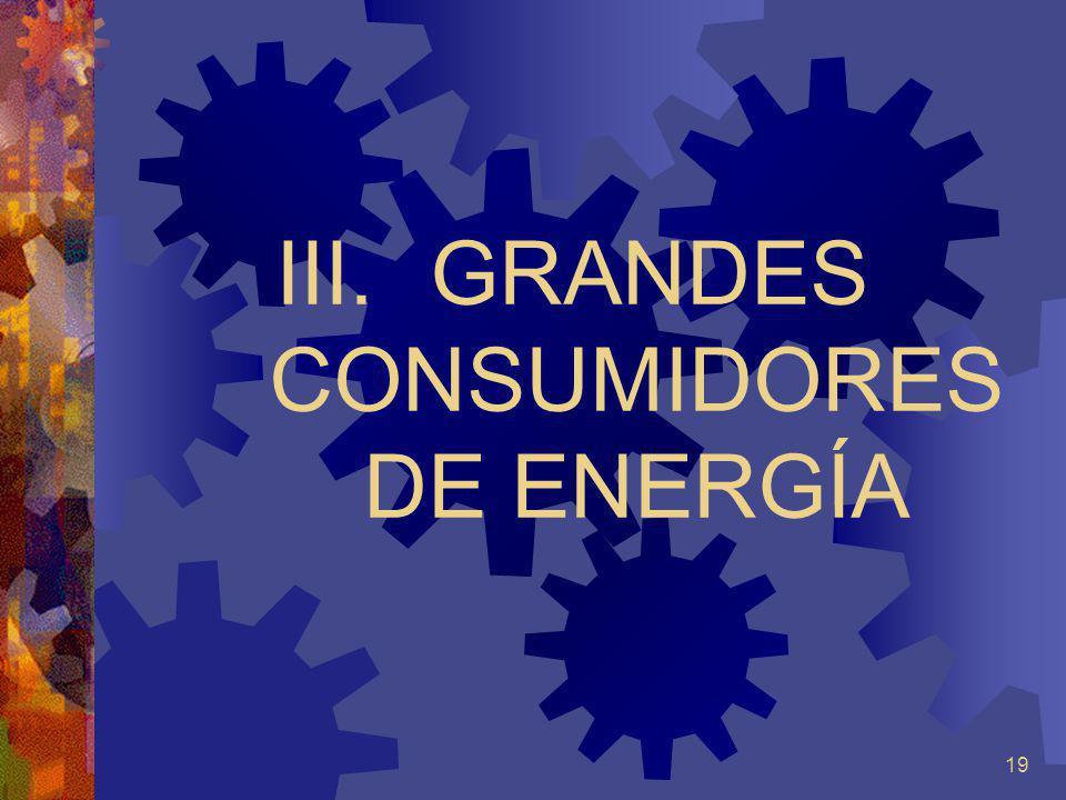 GRANDES CONSUMIDORES DE ENERGÍA