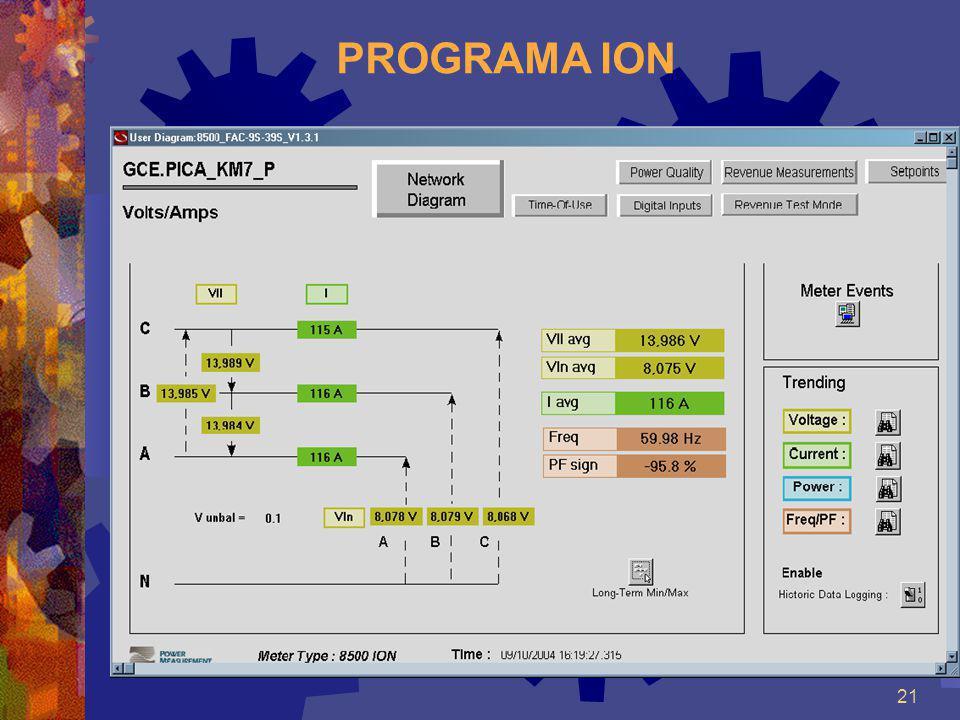 PROGRAMA ION