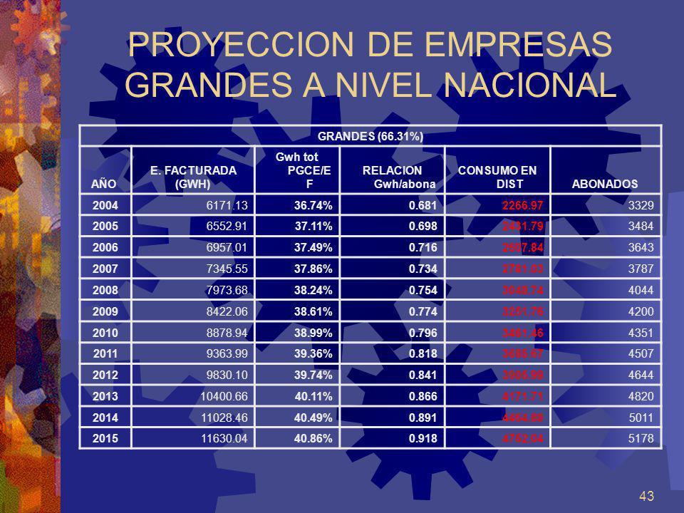 PROYECCION DE EMPRESAS GRANDES A NIVEL NACIONAL