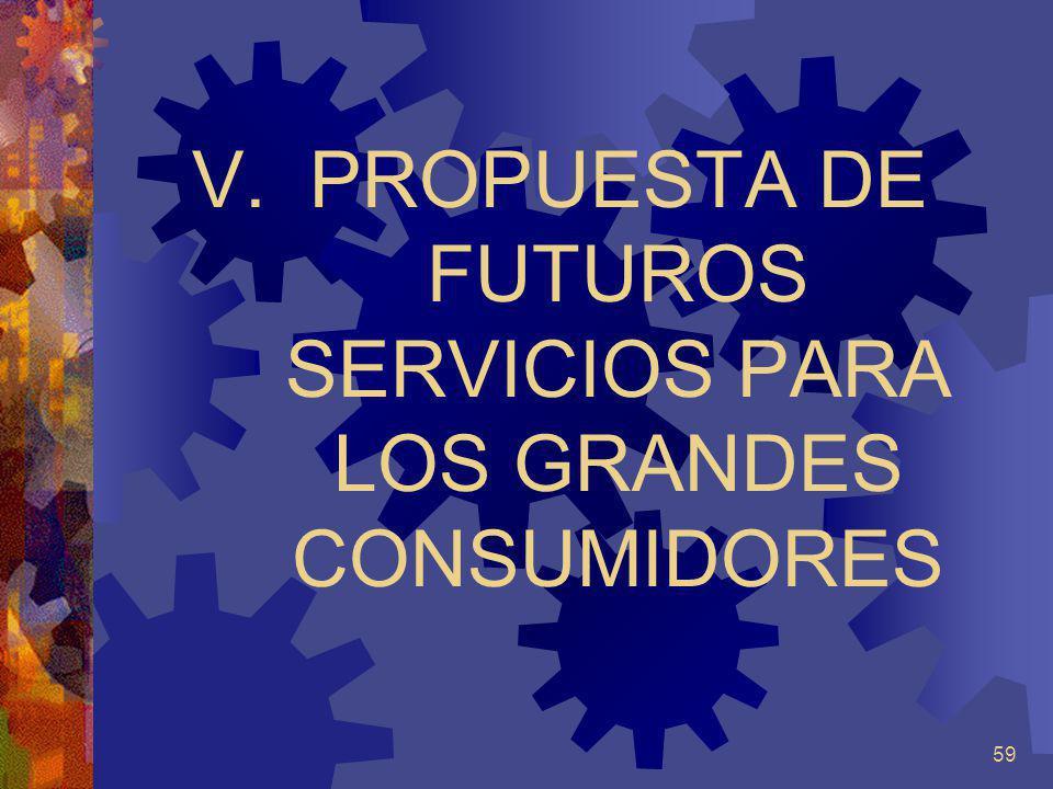 PROPUESTA DE FUTUROS SERVICIOS PARA LOS GRANDES CONSUMIDORES