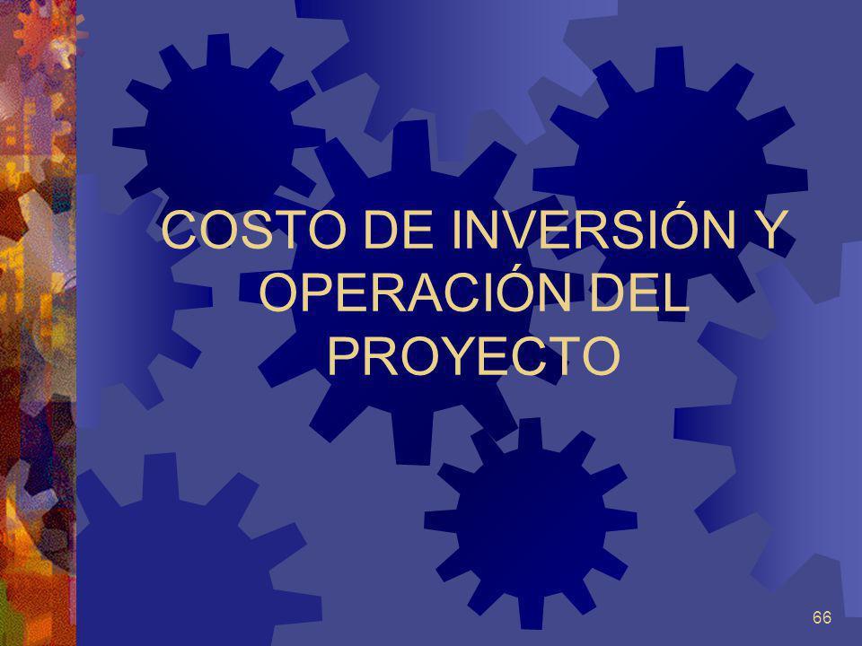 COSTO DE INVERSIÓN Y OPERACIÓN DEL PROYECTO